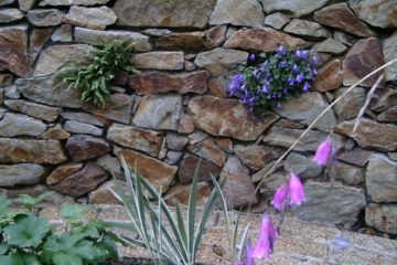 Raised bed using Howth stone.